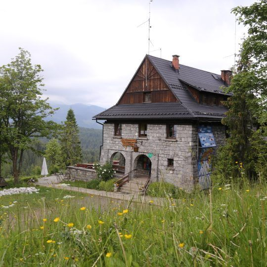 https://glodowka.com.pl/wp-content/uploads/2016/10/IMG_6739_1.resized-540x540.jpg